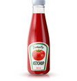 Ketchup Realistic Bottle vector image vector image