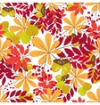 seamless pattern autumn colorful vector image