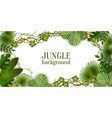tropical jungle exotic lianas vine and palm leaves vector image vector image