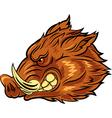 Cartoon of head wild boar mascot vector image