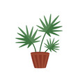 flat icon of plant with wide green leaves vector image