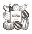 pumpkin design template hand drawn thanksgiving vector image vector image