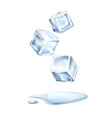 realistic ice cubes mint green leaves vector image