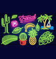 set fashion neon sign cactus and pineapple vector image vector image