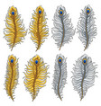 set of images of gold and silver peacock feathers vector image vector image