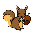 squirrel animal cartoon vector image vector image