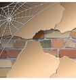 Wall with cobwebs vector image vector image