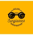 Logo with the image of round sunglasses vector image