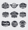 Retro vintage label Set vector image