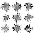 abstract fluid-like shape set splatter splash vector image