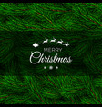 fir branch backdrop design christmas decoration vector image vector image