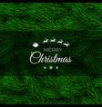 fir branch backdrop design christmas decoration vector image