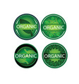 round green leaf organic label icon set vector image vector image