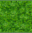 seamless green foliage pattern vector image