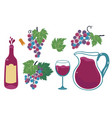 set of wine graphic elements isolated on white vector image