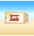 Summer sale tag vector image vector image