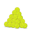 Pile of tennis balls Many tennis ball Sports vector image