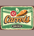 carrots vintage tin sign for fresh farm vegetable vector image