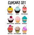 cupcakes set set muffins different vector image vector image