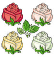 hand drawn sketch rose with leaves set vector image vector image