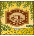 Retro Olive Grove vector image vector image
