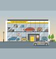 car dealership showroom interior vector image