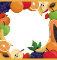 fruit delicious frame design vector image