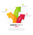 infographics with 3 option branching circular vector image
