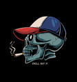 skull smoking vector image