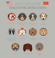 dogs in the united states american dog breeds vector image