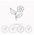 Flower with petals icon Plant and leaves sign vector image