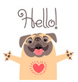 greeting card with cute dog sweet pug says hello vector image vector image