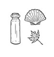 line art set with bottle seashell and leaf vector image