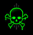 skull with a bright green outline with paint vector image