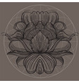 elegant element of a stylized flower with smooth vector image vector image
