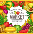 fresh fruit and berry sketch frame for food design vector image vector image