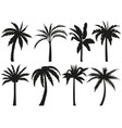 palm trees silhouettes tropical leaves retro vector image
