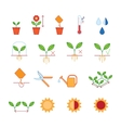 Seeding planting instructions steps pruning vector image vector image