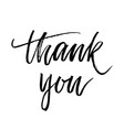 thank you text calligraphy vector image