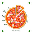 the set pizza vector image vector image