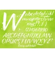 Modern alphabet green background vector image
