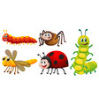 different types of bugs on white background
