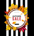 fall sale seasonal autumn promotion design with vector image