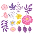 set decorative delicate flowers objects vector image vector image