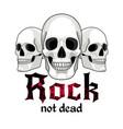 skulls logo for musical band vector image