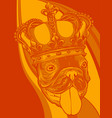 dog king in colored background vector image vector image