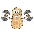 Peanut Cartoon Doing Weights vector image vector image