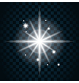 Shine star sparkle icon 14 vector image vector image