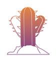 cactus plant icon vector image vector image