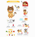 cat infographic vector image vector image